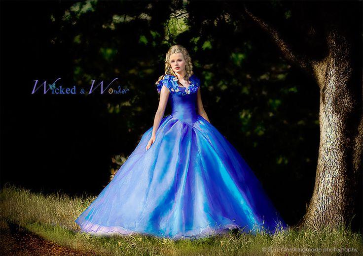 Cinderella Dress - Cinderella Costume, Adult Cinderella Dress 2015, New Cinderella ball gown by wickedandwonder on Etsy https://www.etsy.com/listing/225799424/cinderella-dress-cinderella-costume