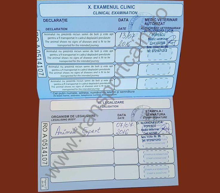 model pasaport transportcaini 6 Transport câini