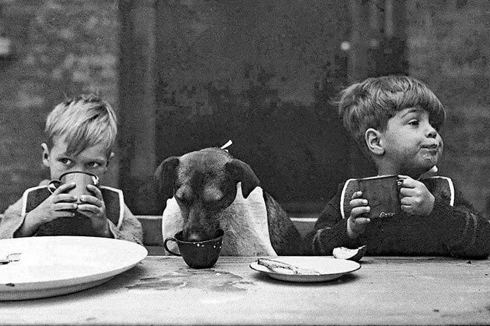 If you pick up a starving dog and make him prosperous he will not bite you. This is the principal difference between a dog and man.  Mark Twain