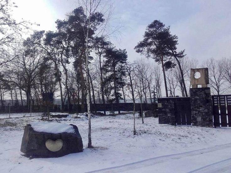Winter wonderland / Zimni kralovstvi