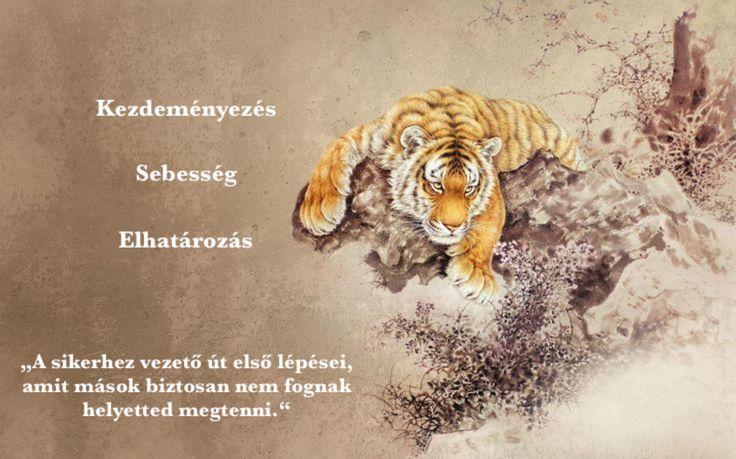 A Seibukan Jujutsuban a hónapokhoz és a különböző fekete öves szintekhez kapcsolódóan 7 ELEM létezik. Mindegyik elemhez tartozik 3 filozófiai ALAPELV, és egy ÁLLAT, ami az elemet jelképezi.  A Január hónap eleme a Tűz, állata pedig a Tigris. A szinthez kapcsolódó filozófiai alapelveink: Kezdeményezés, Sebesség, Elhatározás. BLOG: http://szegedbudokan.hu/blog/valtsd-meg-kicsiben-a-vilagot-avagy-kezd-az-elso-lepessel/