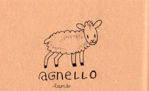 Learning Italian Language ~  Agnello (Lamb) IFHN