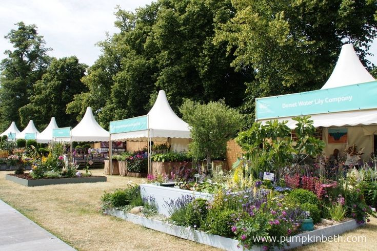 You can visit the many different plant stands, all run by specialist nurseries from all over the country and even further afield. The RHS Hampton Court Palace Flower Show allows visitors to see plants from all over the world, all in one place! It is a super show for anyone wishing to purchase plants or anyone who enjoys shopping.