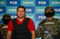 """Mexican Kingpin's Son Captured Mexican Marines have captured one of the sons of Mexico's most-wanted drug kingpin, Joaquin """"El Chapo"""" Guzman, leader of the Sinaloa cartel. Jesus Alfredo Guzman Salazar, 26, has been allegedly taking on more leadership roles in Mexico's most powerful drug cartel and purportedly serves as the administrator of his father's fortune. Forbes estimates the estate to be worth about $1 billion. """"El Gordo,"""" or the Fat One, was captured early Thursday during a raid"""