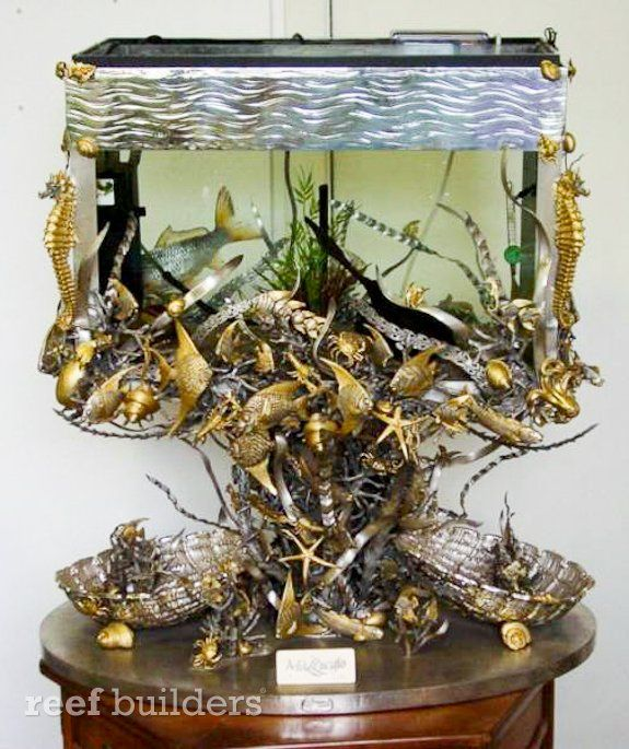 17 best images about vintage fish tanks on pinterest for Most expensive saltwater fish