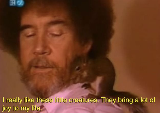 CLICK THE PICTURE TO SEE MORE ON BUZZ FEED!!!! He brought his pet squirrels on the show. This is Pea Pod The Pocket Squirrel. Bob Ross. Funny :3