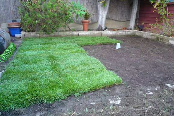 new sod How to Lay Sod Grass In Time for Spring