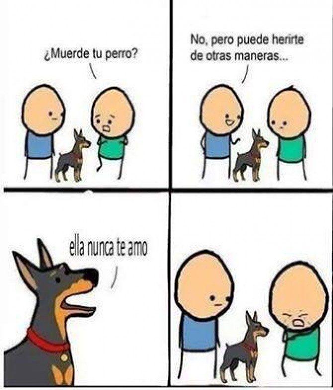 Perro malo  #huevadasnet Para más visita: http://www.Huevadas.net