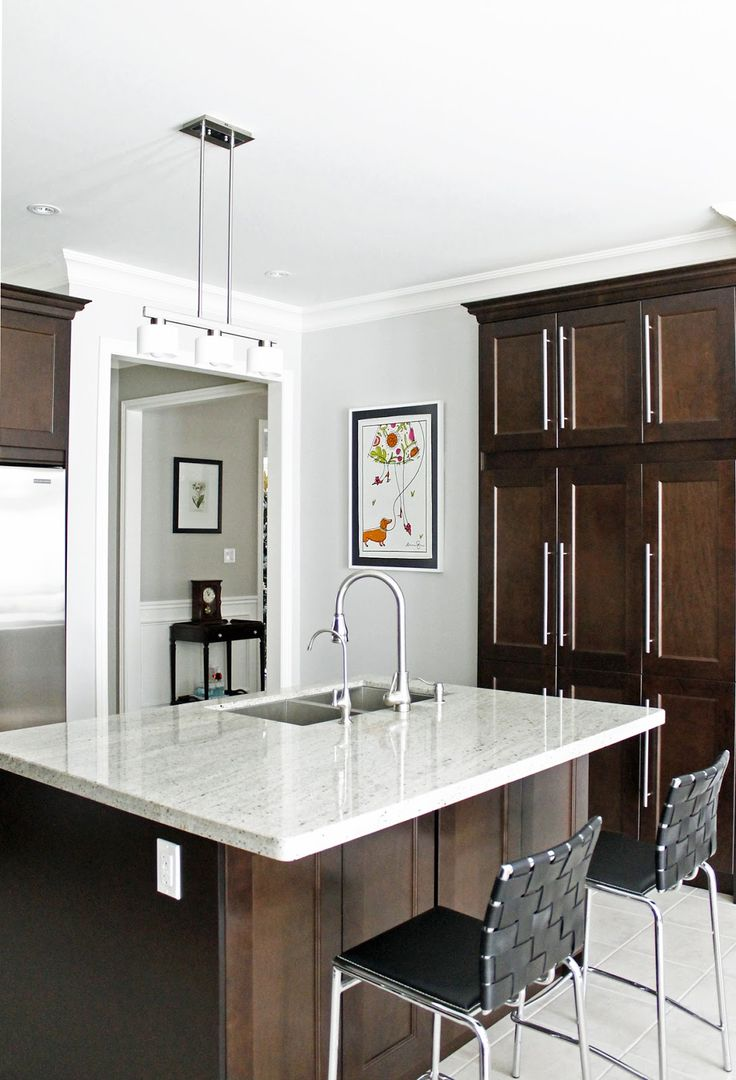 dark stained shaker cabinets with contemporary pulls ...