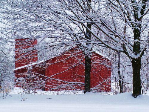noeltoutelannee:  North Amherst,Massachusetts