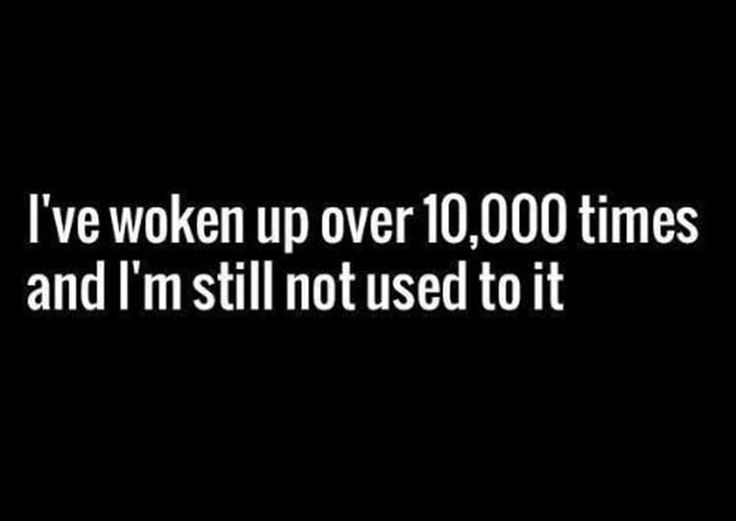 Funny Pictures | Funny Quotes | Sleep