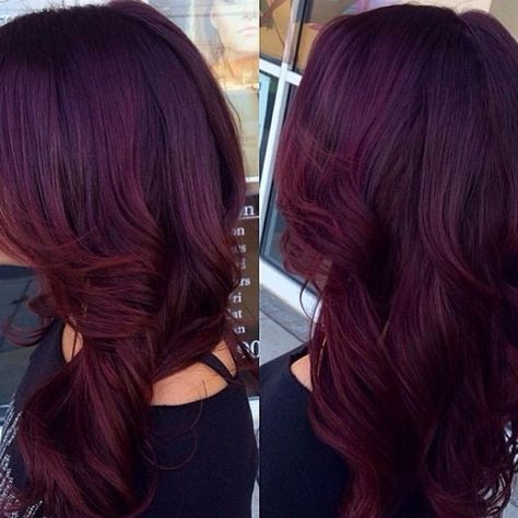 Red violet with Curly Long Hair - Mahogany Hair