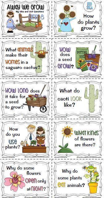 CUTE Imagine It! resources for first grade!!