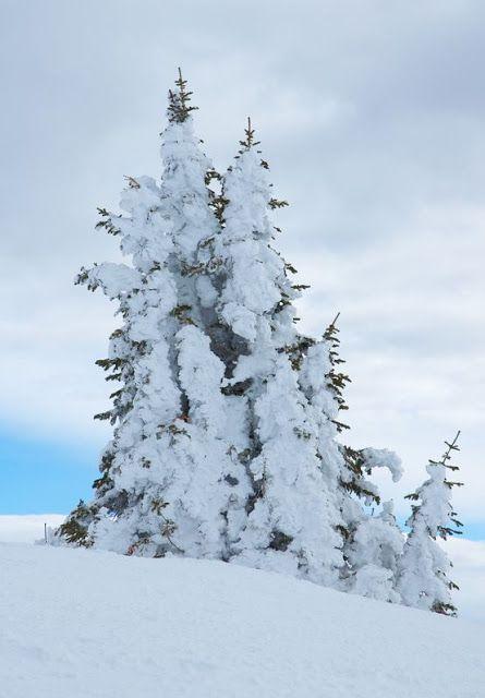 Snowmass Ski Resort - Best Colorado Vacation Ever