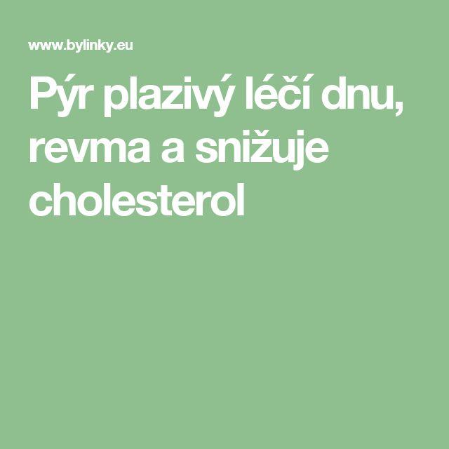 Pýr plazivý léčí dnu, revma a snižuje cholesterol