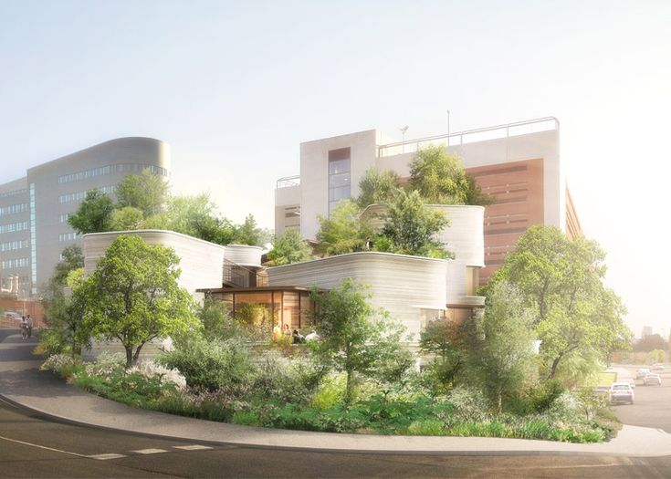 Thomas Heatherwick gets the green light for Maggie's Centre modelled on pot plants.