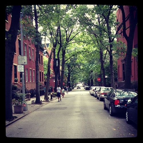 113 best images about brooklyn new york on pinterest for 64 terrace place brooklyn