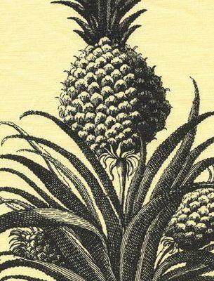A Library Of Design: Gardens, Fashion, Interiors U0026 Glamour: A Botanical  Extravaganza