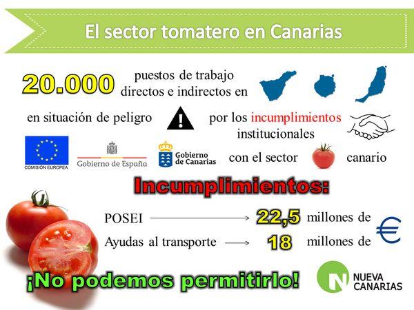 Situación del sector tomatero canario.