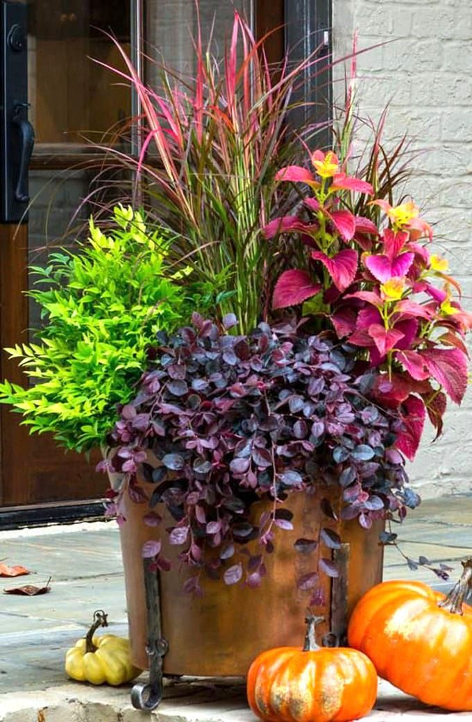 22 Beautiful Fall Planters For Easy Outdoor Fall Decorations Fall Planters Autumn Garden