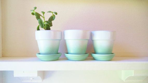 These are 3 terracotta pots made modern with my hand painted ombre enamel finish!  I love the combination of mint and white! This is the first