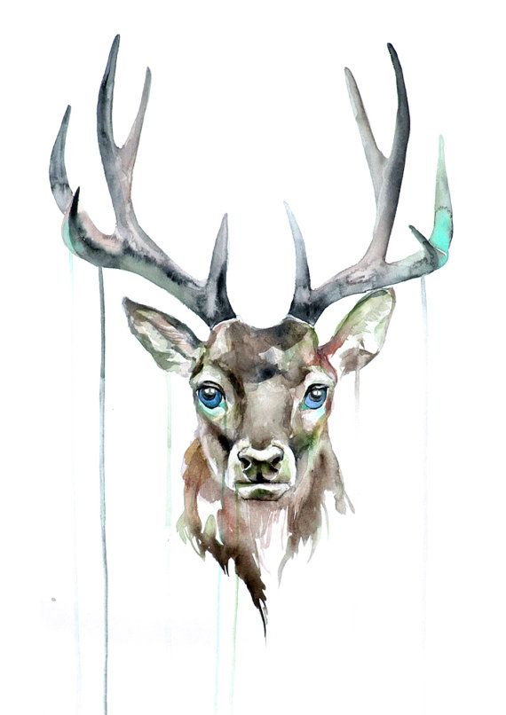 Deer Watercolor Print - Watercolor Art Poster - Animal Watercolor Print - Deer…