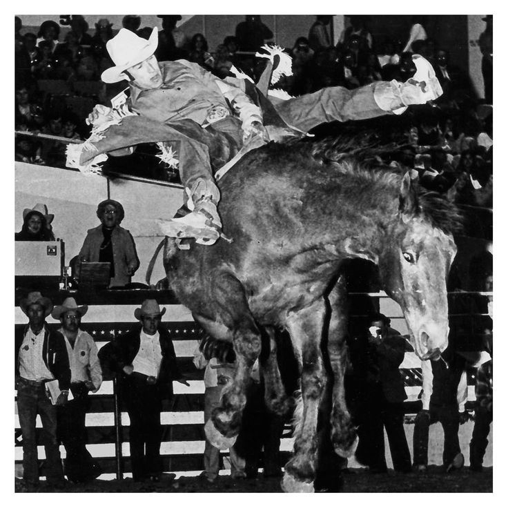 108 Best Images About Bronc Ridin On Pinterest Montana