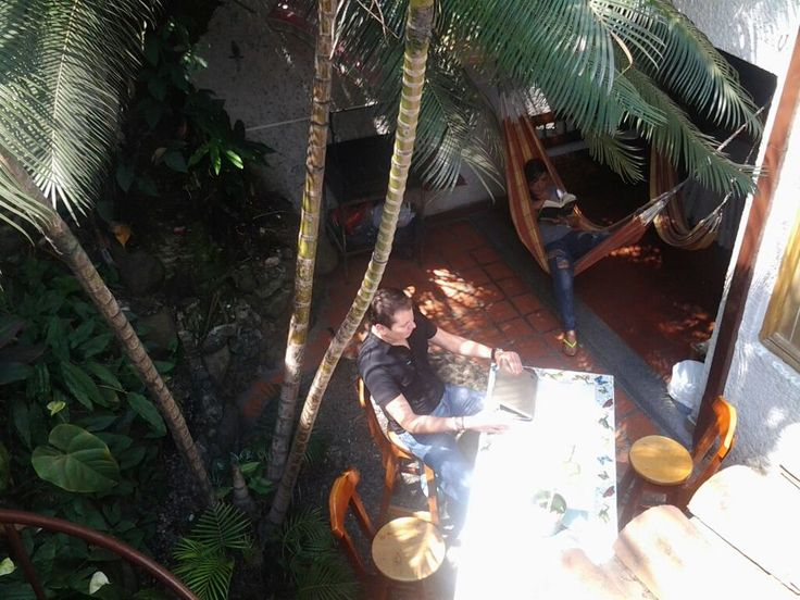ESPACIOS Y LUGARES FAVORITOS #palmtreehostelmedellin  Palm Tree Hostal Medellin; Our backpacker Hostel in Medellin, #Colombia #travel #traveler #traveling #lp #lonelyplanet #Enmicolombia #MaravillasdeColombia #hostel #hosteling #bakcpacker #backpacking #SouthAmerica #hostelworld #culture #nature #adventure #traveltheworld #hostelbookers #hostelworld #hw #lonelyplanet #lp #tripadvisor #traveltips #traveltips #tips #trip #ecotravel #photography #pics #instatravel   http://palmtreemedellin.com/