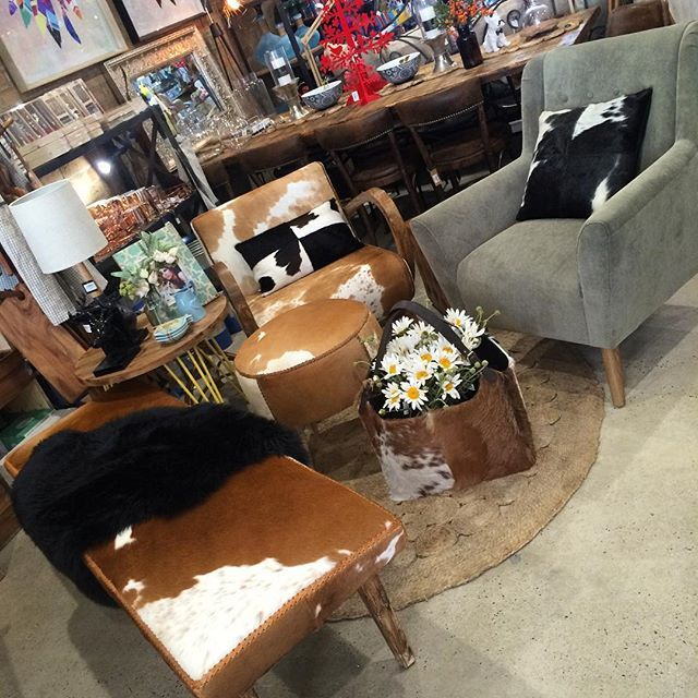 Good Country Style here at Mary & Tex #cowhidefurniture #leather #lambskinrug #daisies #tablelamps #elkbookends