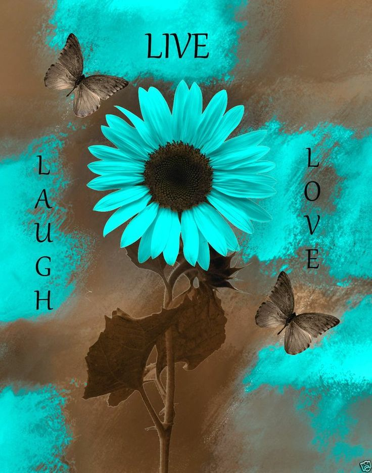 Teal Brown Wall Art Live Laugh Love Sunflower Butterflies