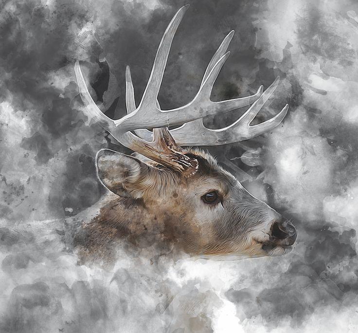 #deer #poster #canvas