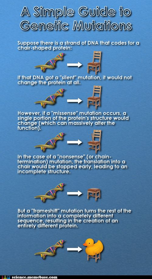 A simple guide to Genetic Mutations