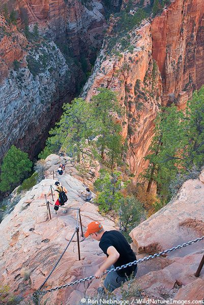 Angels Landing - great trail! Very scary if u are afraid of heights . This is located in Zion National Park.