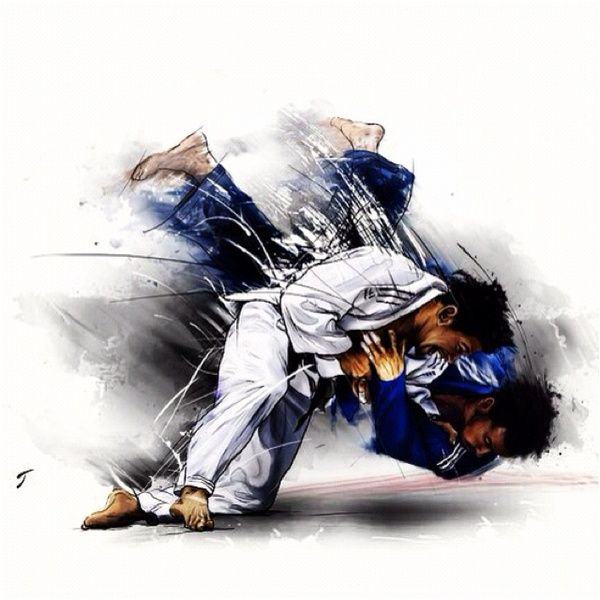 dessin de prises de judo