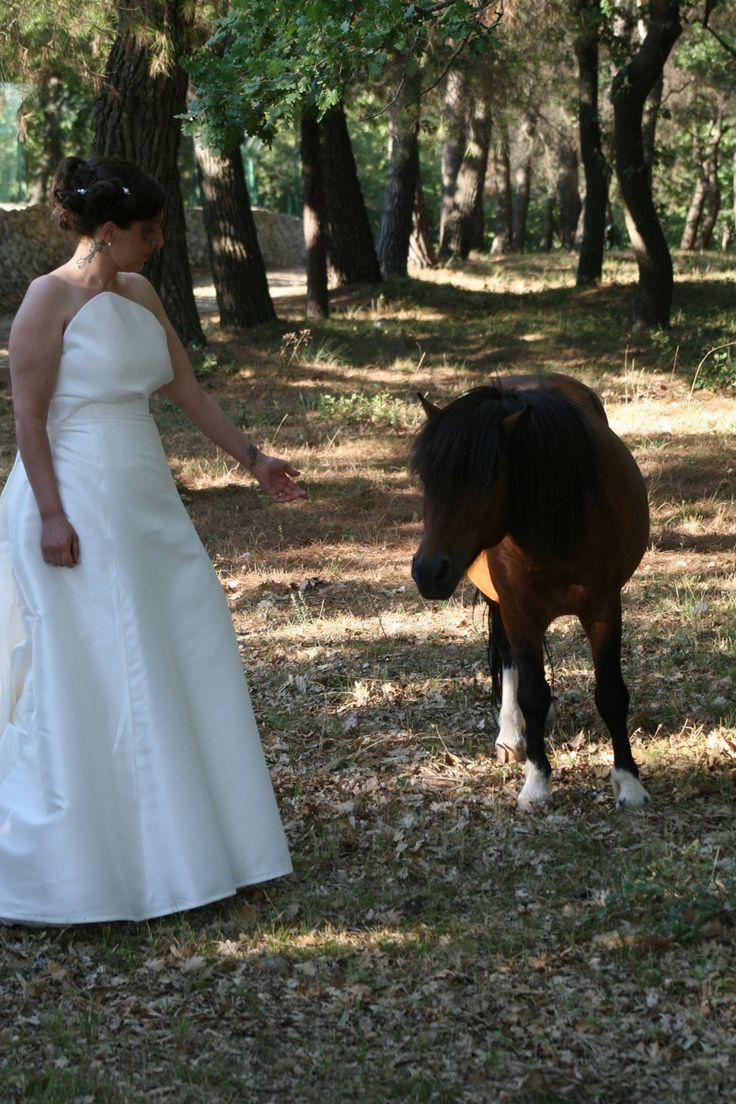 La sposa trova un amico nel Parco Naturale Selva Reale