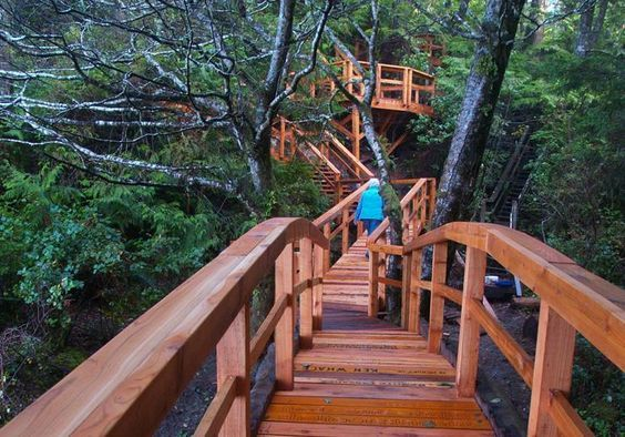 The trails around Tofino are seriously incredible. Must see! #YouWontBeSorry #Tofino www.youwontbesorry.com