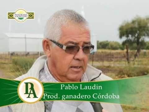 Panorama Agropecuario N°444/3 Ley de Bosques y productores Cond. y Dir. ...