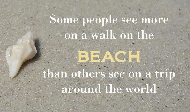 Some people see more on a walk on the beach that others see on a trip around the world.