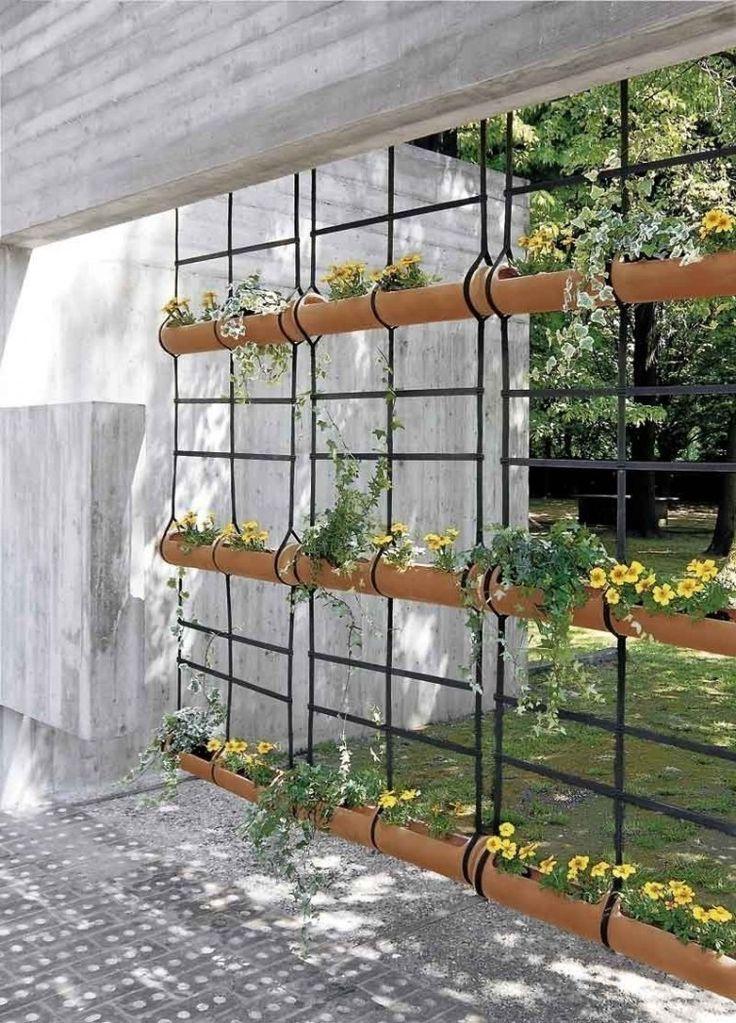Divide los sectores de tu jardín utilizando plantas con estas ideas originales.