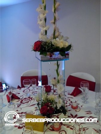 18 best boda rojo con blanco images on pinterest for Mesas de bodas decoradas