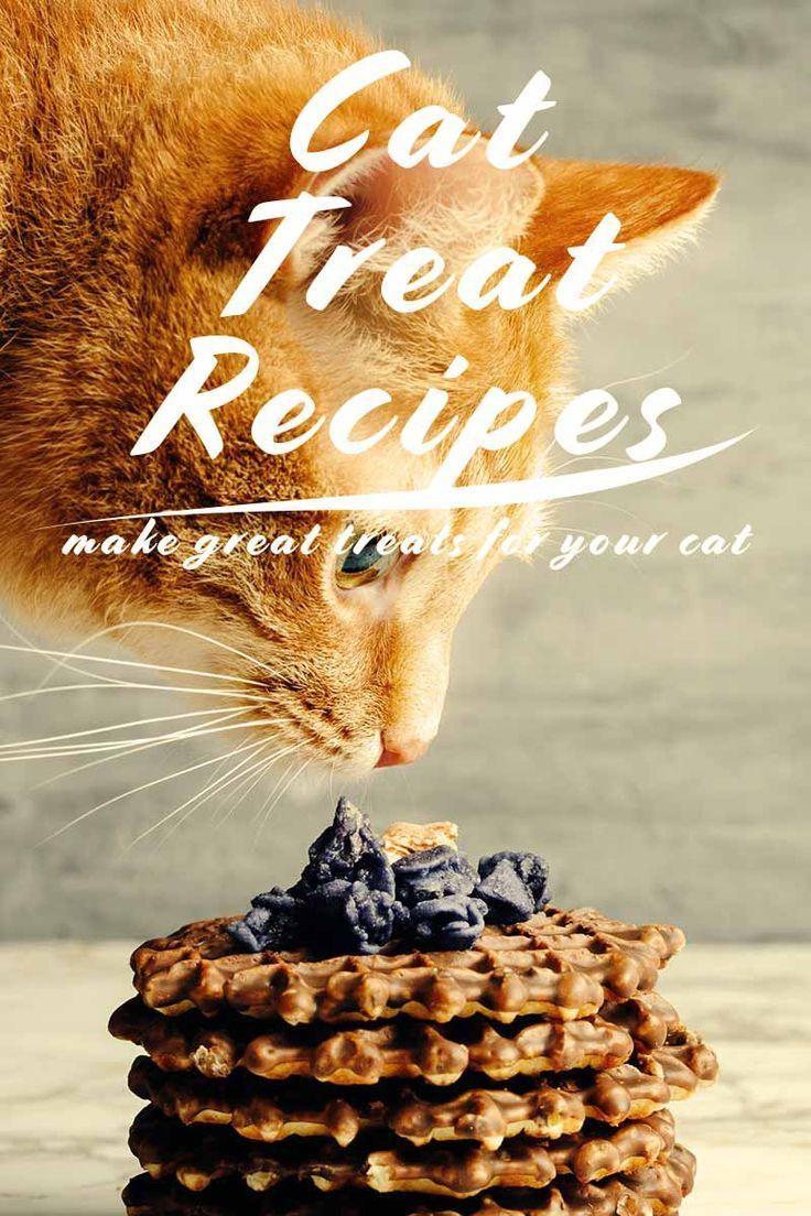 Cat Treat Recipes Healthy Homemade Snacks For Your Cat Cat Treats Homemade Homemade Cat Treats Recipes Homemade Cat Food