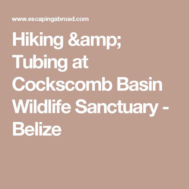 Hiking & Tubing at Cockscomb Basin Wildlife Sanctuary - Belize