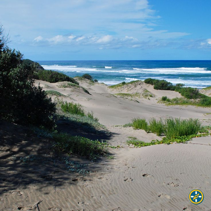 The beaches on the #WildCoast are as close to paradise as you can get! http://bit.ly/PondoHopper