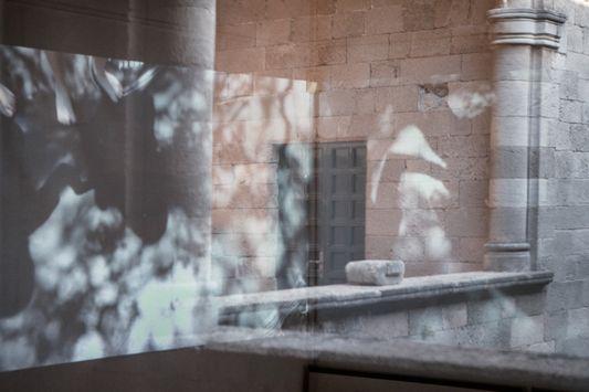 In the light /Magdalini Kourti