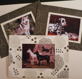 Unique handmade dog lover blank card set - 3 Cards  birthday, anniversary, get well soon, card