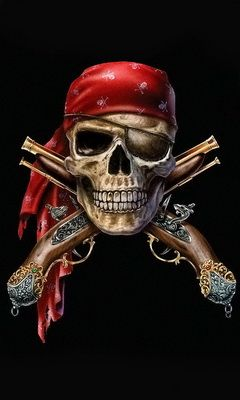 pirate skull pictures - Google Search