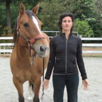 Incorporating stretching and yoga into your equine's routine can improve his well being and performance