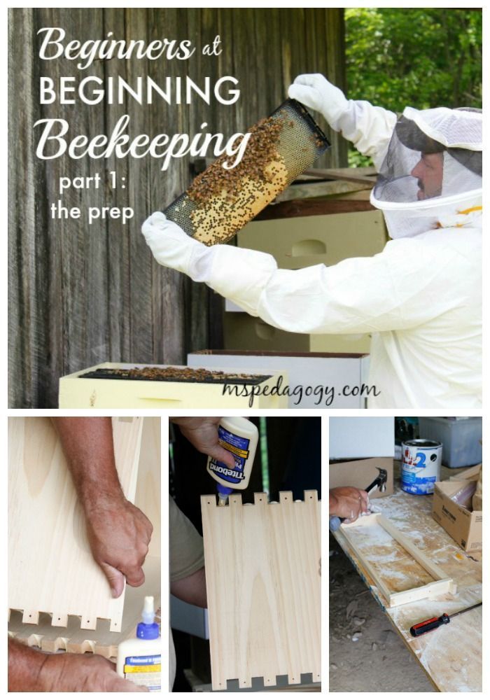 We are novice beekeepers. But, if you're curious about beekeeping, the things that we have learned so far, and the cost associated with this hobby, annnnnnnd, you wanna see some really interesting pictures of our behive prep, then come on over.  www.mspedagogy.com