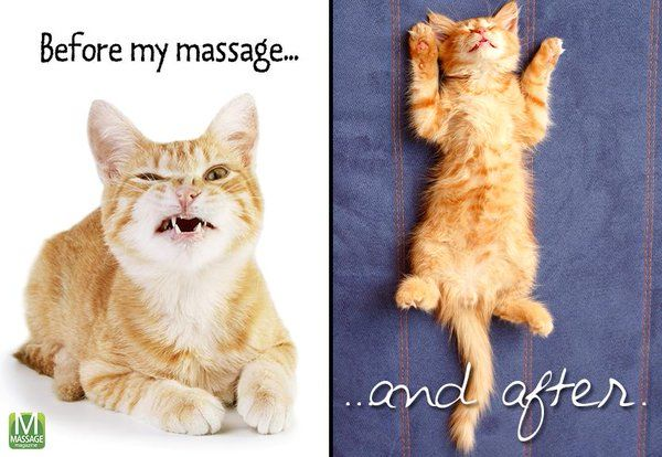 Things to do before and after a massage: http://www.massageprocedures.com/resources/things-to-do-before-and-after-massage/