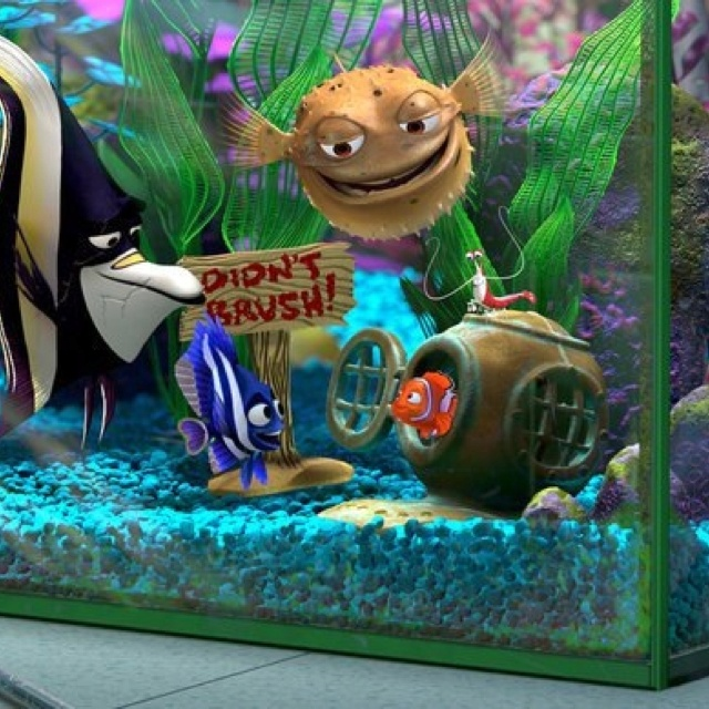 Mejores 80 imágenes de Nemo <3 <3 <3 <3 en Pinterest | Buscando a ...